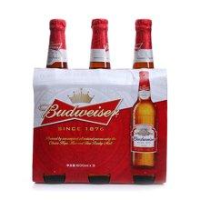 百威啤酒瓶装组合包((600ml*3))