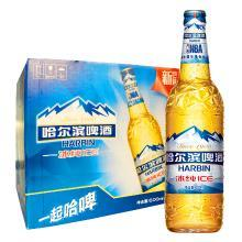 哈尔滨(Harbin)啤酒 冰纯600ml*12大瓶 整箱