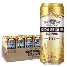 哈爾濱(Harbin) 小麥王啤酒500ml*36聽 整箱裝 麥香濃郁 一起 哈啤