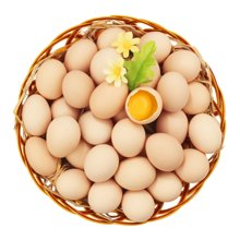 【满99减30元】自家农场鲜鸡蛋 20枚 只发当日鲜蛋 产自山区自?#20449;?#22330; 精?#22856;?#20859;五谷食料 无添加 安全新鲜味美