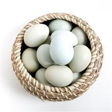 30枚绿壳乌鸡蛋农家散养汇聚琪源