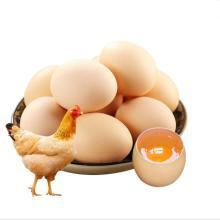 【汇聚琪源】20枚/箱农家鲜鸡蛋
