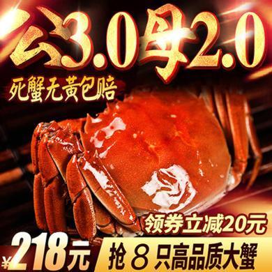 【領券立減20共8只】現貨大閘蟹鮮活特大新鮮螃蟹海鮮公母大閘蟹水產