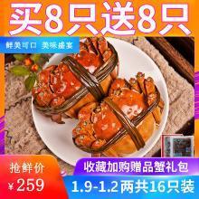 【買8送8】大閘蟹鮮活現貨六月黃螃蟹公母蟹隨機共16只裝