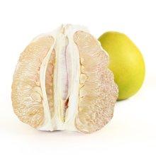 【现货】沙田柚 2个装 梅县柚子 新鲜水果白柚