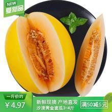 食王记  食王记 甘肃民勤沙漠黄金蜜瓜4.5-5斤(2-3个装)甜瓜 新鲜当季水果 果园现摘现发