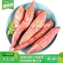 食王记 陕西临潼板栗薯 5斤装约10-15根 红薯地瓜