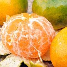 华朴上品 四川椪柑 柑橘 橘子 4斤装 12-16个