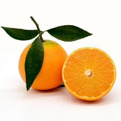 【預售】華樸上品 四川眉山 愛媛橙子5斤中大果 9-12個 新鮮水果橙子 10月15號左右發貨