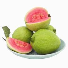华朴上品 福建红心芭乐 番石榴 5斤装 8-12个 新鲜水果