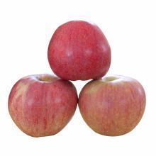 华朴上品 甘肃天水 苹果8斤装18个 脆甜多汁