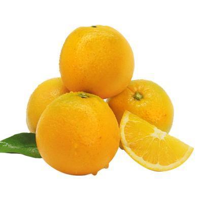 【預售】華樸上品 麻陽冰糖橙 5斤裝25-30個 新鮮小橙子 12月4號左右發貨