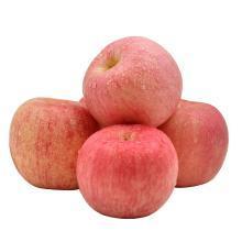 华朴上品 山东烟台苹果 红富士 5斤装 75-85mm 新鲜苹果