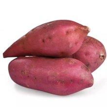 华朴上品 地瓜海南澄迈桥头富硒地瓜 红薯番薯长寿瓜 精品瓜 5斤装 现挖现发