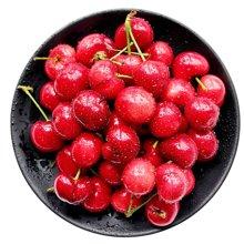 【顺丰空运】华朴上品 樱桃山东美早樱桃 新鲜樱桃3斤装24mm以上 新鲜樱桃