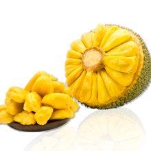食王记 海南三亚【菠萝蜜】非泰国红肉菠萝蜜木菠萝约 23-26斤新鲜水果包邮