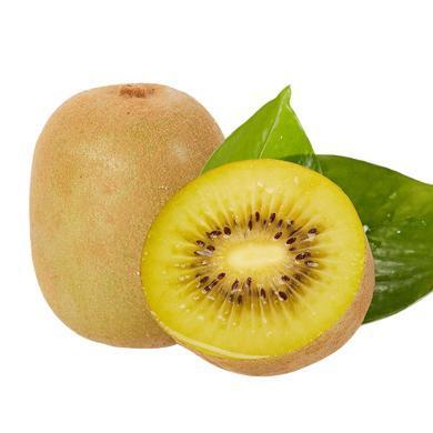 華樸上品 四川黃心獼猴桃奇異果12粒裝 單果90-110g新鮮水果獼猴桃