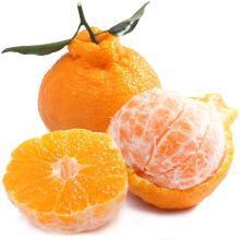 【现摘现发】华朴上品 四川不知火丑橘 中果5斤装9-12个 新鲜橘子