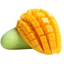 华朴上品 越南青芒 5斤装 单果重200g起 新鲜芒果