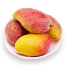 华朴上品 海南树上熟贵妃芒5斤新鲜水果收货即吃