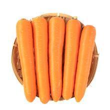 【四川特产】胡萝卜 水果萝卜可榨胡萝卜汁 做咸菜 生鲜蔬菜 4斤装
