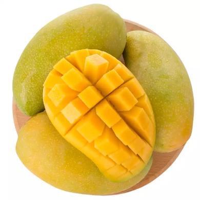 HUAPU 海南金煌芒 帶箱10斤禮盒6-12個裝 新鮮水果芒果 海南直發