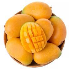 华朴上品 芒果广西小台芒果5斤装 新鲜芒果