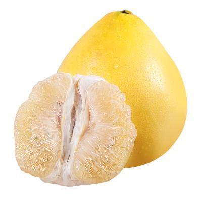 華樸上品 福建平和白柚 4.8-5.2斤2個裝禮盒 新鮮水果柚子白柚