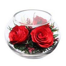 我爱你----不凋谢的玫瑰 ,泰国保鲜花,红玫瑰系列