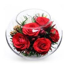 一路上有你----真空玫瑰花,泰国保鲜花,红玫瑰系列