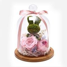 To溫暖你心----苔蘚小兔+粉色永生玫瑰+粉邊紫心奧斯丁
