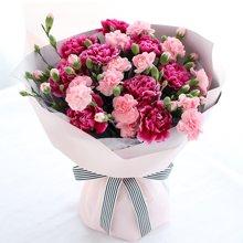 母爱----紫红色康乃馨9枝,粉色多头康乃馨7枝