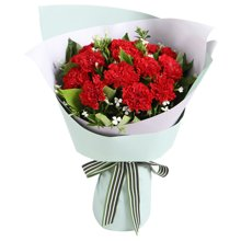 好想你----红色康乃馨12枝,白色相思梅2枝,栀子叶0.5扎