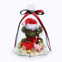 圣诞Merry熊----苔藓小熊1个,进口红色奥斯汀玫瑰1朵,浅粉色小玫瑰1朵
