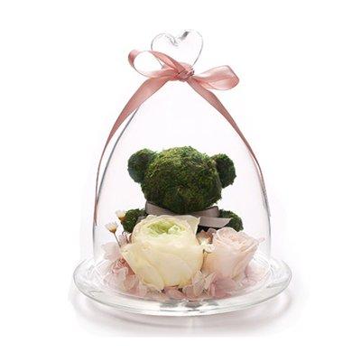 快樂熊----苔蘚小熊1只,綠色奧斯丁玫瑰,淺粉桃色小玫瑰