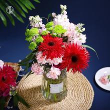 花里家 鲜花+花瓶3种以上花材混搭【非洲菊、紫罗兰、小雏菊、康乃馨、香柳叶】
