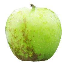 食王记 印度青苹果 印冬丑苹果糖心4.5-5斤装老品种蜜甜苹果 丑丑新鲜水果