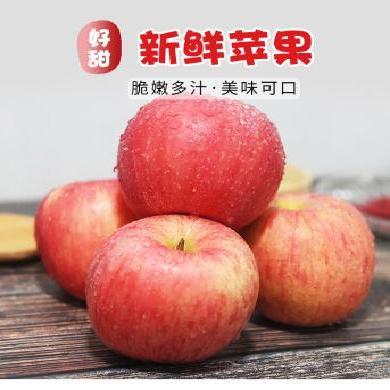 陜西特產 富平紅富士蘋果10斤18個裝 優質大果 水果