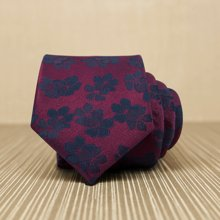 Evanhome/艾梵之家 男士休闲领带 男商务正装时尚英伦韩版潮领带礼盒装7cmL7097